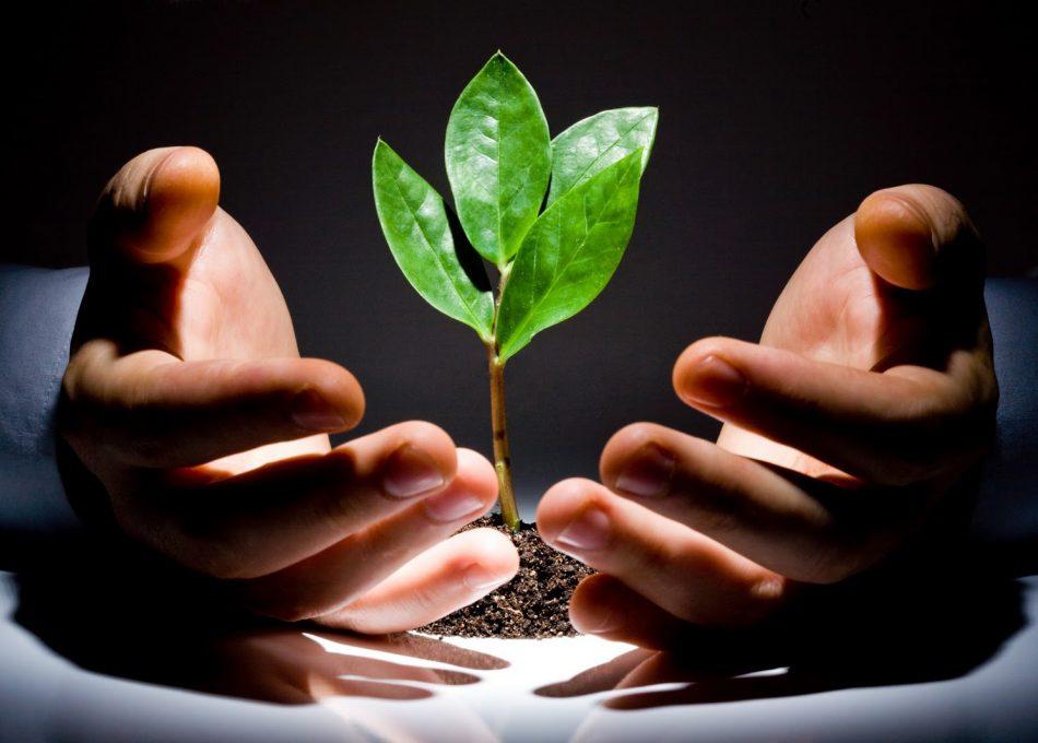 Venture-Capital-achieve-corporation